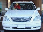 シャンプー洗車